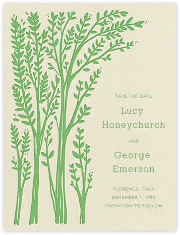 Louisa I (Save The Date) - Spring Green - Paperless Post - Before the invitation cards
