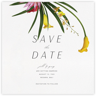 Malacca (Save the Date) - Paperless Post - Modern save the dates