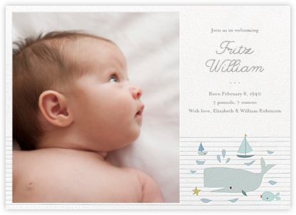 Moby and Co. (Photo) - Little Cube - Birth announcements