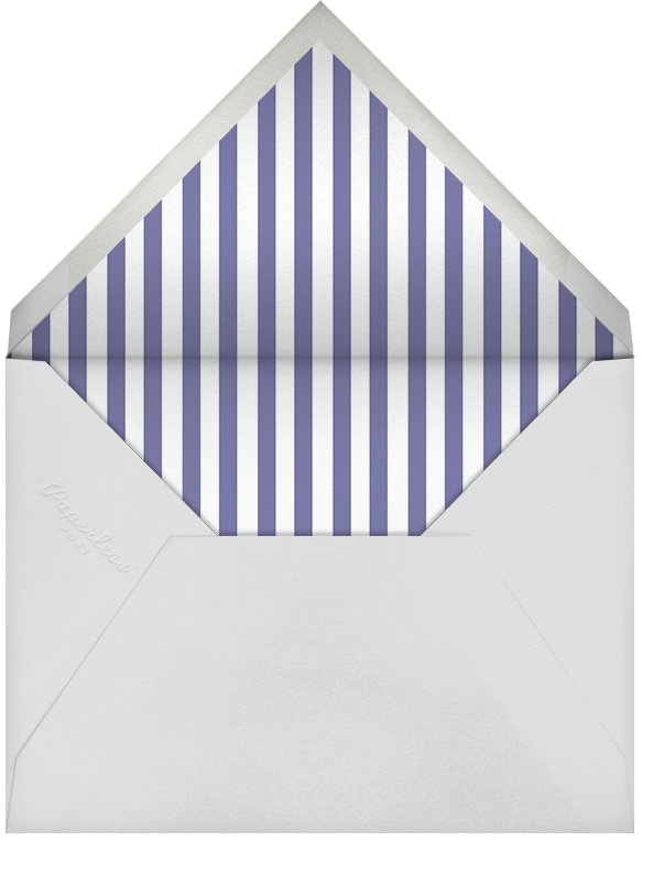 Biplane - Paperless Post - Retirement party - envelope back