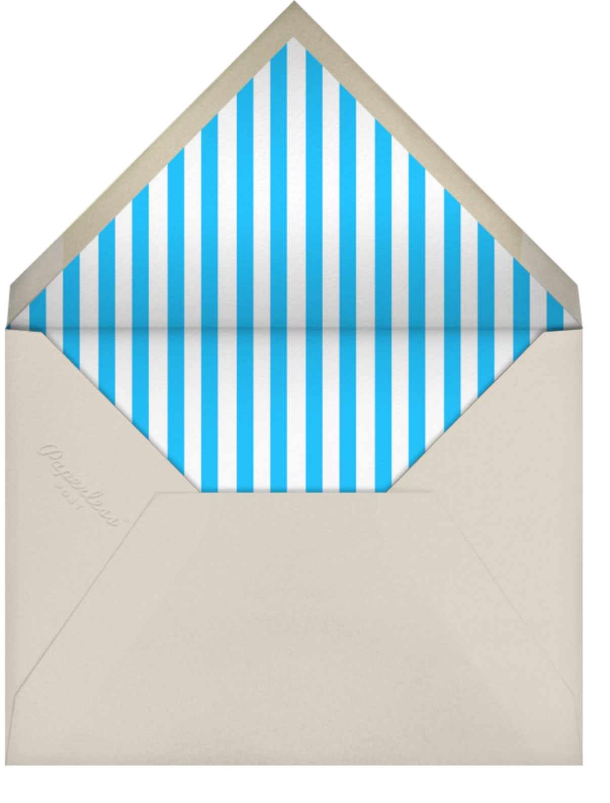 Snapshot - Single Sided - Paperless Post - Adult birthday - envelope back