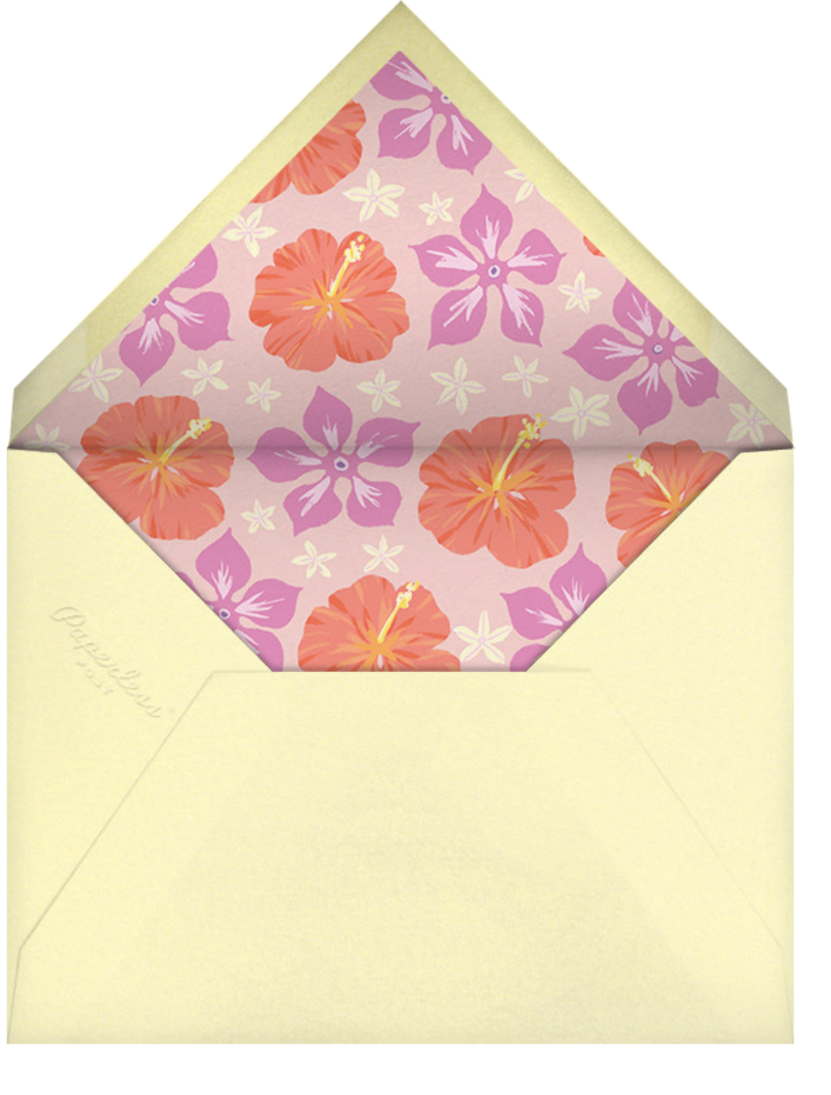 Ala Moana - Paperless Post - Pool party - envelope back