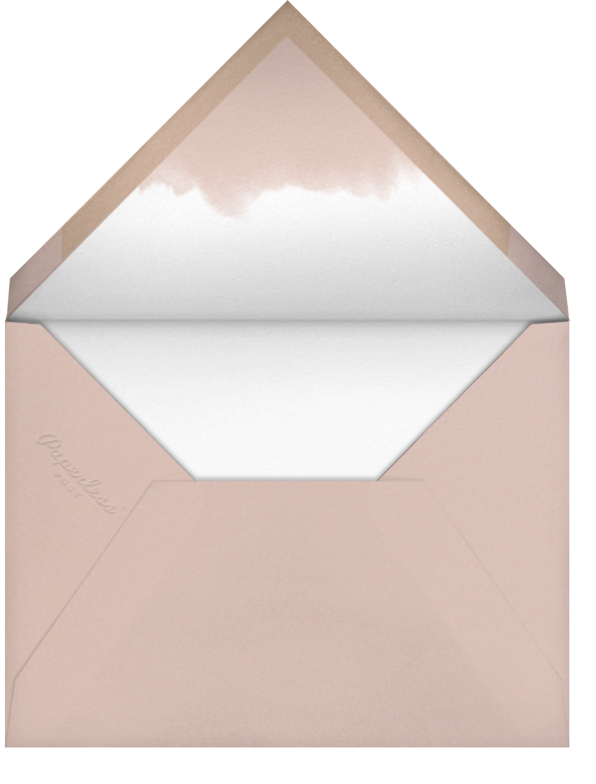 Dip Dye - Antique Pink - Paperless Post - Save the date - envelope back