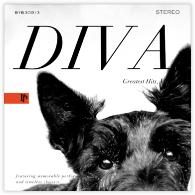 Diva Album - Black - Paperless Post -