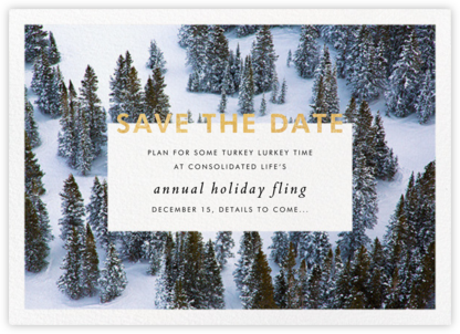 Winter Trees - Gray Malin - Before the invitation cards