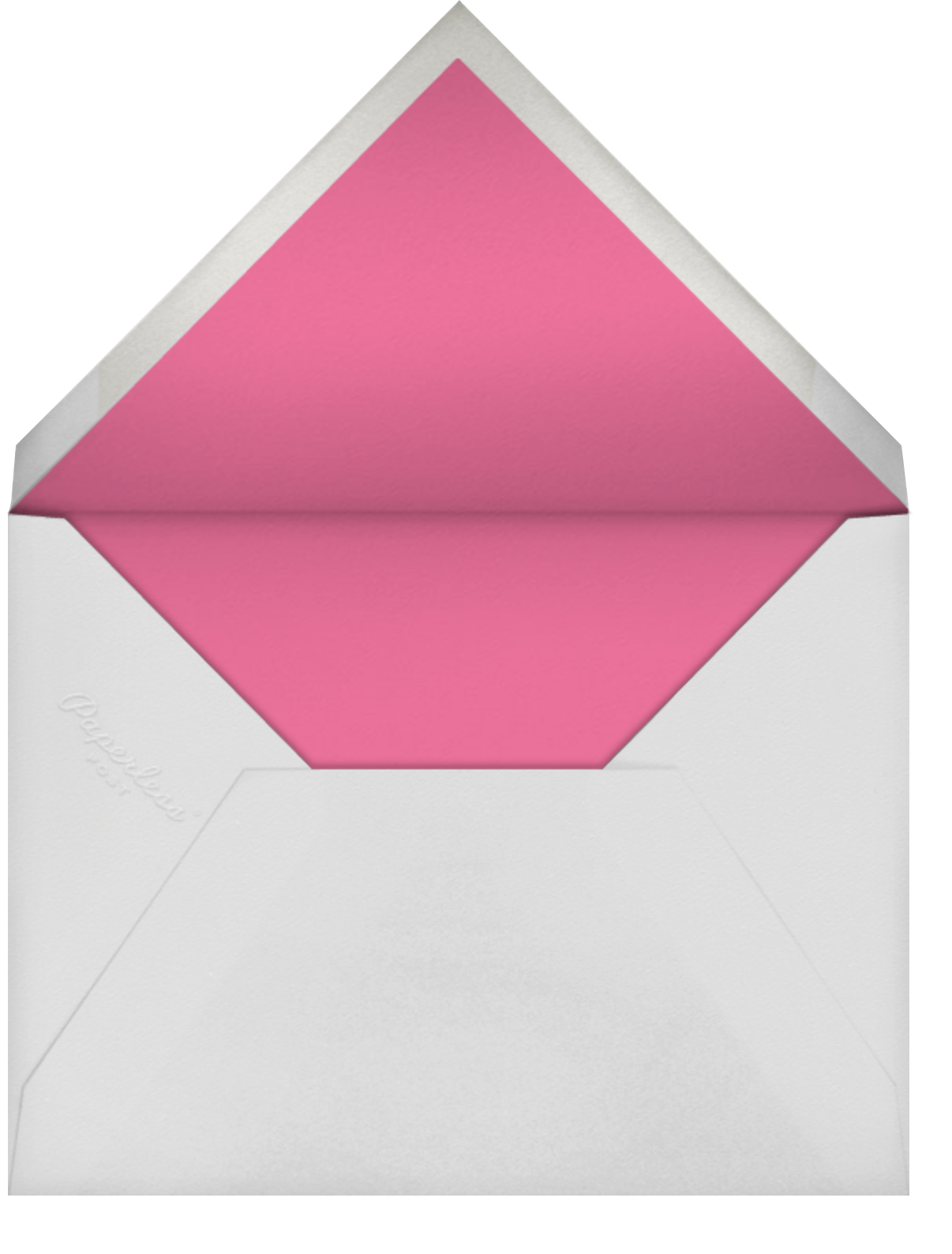 Llama with Balloons - Gray Malin - Western party invitations - envelope back