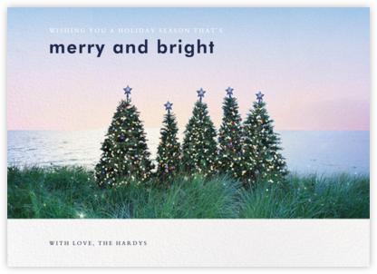Christmas Trees  - Gray Malin - Gray Malin holiday