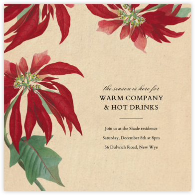 Euphorbia - John Derian - Holiday invitations