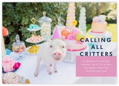 Piggy Picnic - Gray Malin -