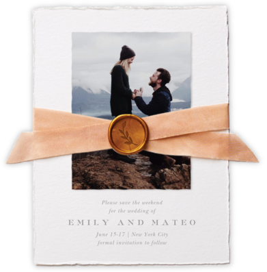 Sealed with Love - Cheree Berry - Photo save the dates