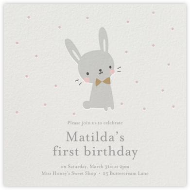 Baby Bunny - Little Cube -