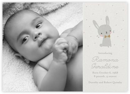 Baby Bunny Photo - Little Cube
