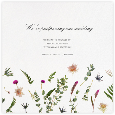 Fleurs Sauvage (Square) - Paperless Post - Wedding Postponement Cards