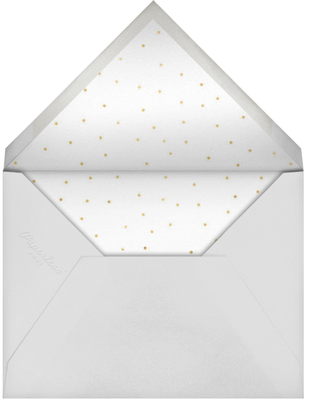 Stripe Border - Peacock - Paperless Post - Breonna Taylor birthday cards - envelope back