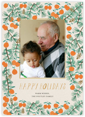 Citrus and Pine Photo - Mr. Boddington's Studio - Holiday Cards