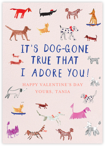 Dogs for Days - Mr. Boddington's Studio - Valentine's Day Cards