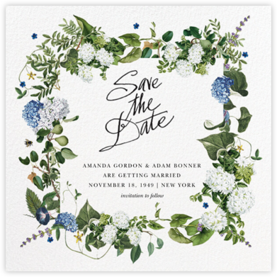 Provence - Stephanie Fishwick - Save the dates