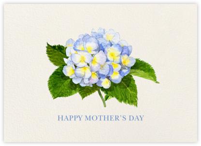 Blue Hydrangea - Felix Doolittle - Mother's Day Cards