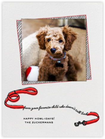 Holiday Dog - Red - Paperless Post