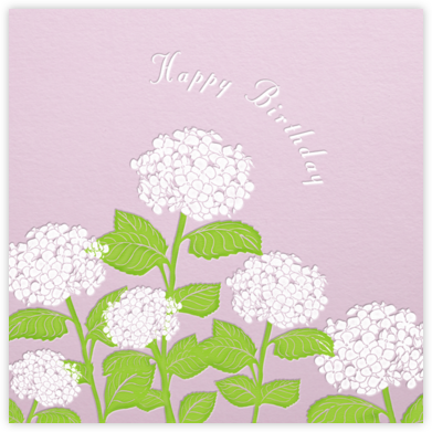 Hydrangea (Blush) - Paperless Post - Birthday Cards