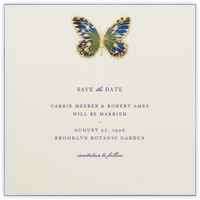 Hand Painted Butterfly - Blue Green - Bernard Maisner - Save the dates