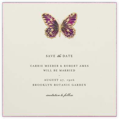 Hand Painted Butterfly - Magenta - Bernard Maisner - General Entertaining Invitations