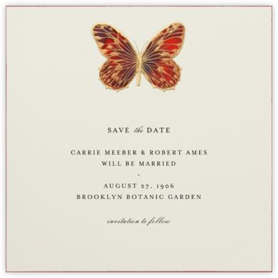 Hand Painted Butterfly - Red Brown - Bernard Maisner