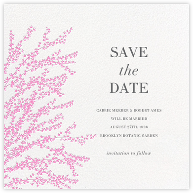 Forsythia - Pink - Paperless Post - Save the dates