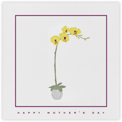 Orchid - Paperless Post - Mother's day cards
