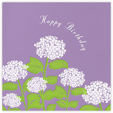 Hydrangea (Lilac) - Paperless Post - Birthday Cards