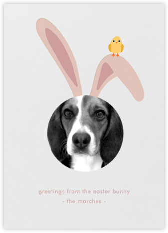 Bunny Ears - Ivory - Paperless Post -